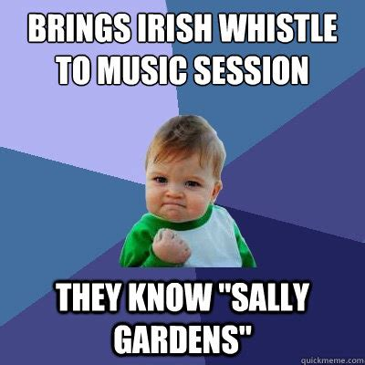 Irish Memes - brings irish whistle to music session they know quot sally