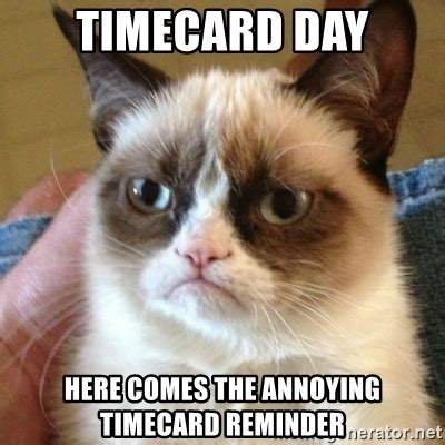 Timecard Meme - timecard day here comes the annoying timecard reminder