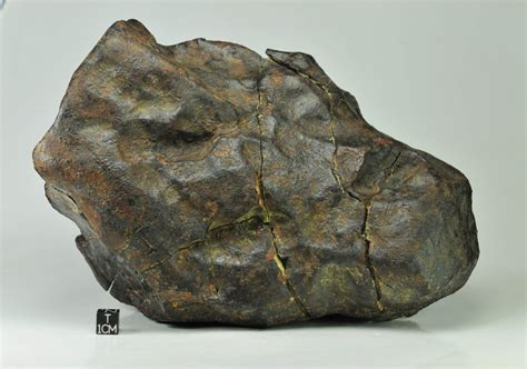 Muonionalusta Meteor Specimen Kode 5 jah 073 l6 4 4kg specimen with in situ photo collecting