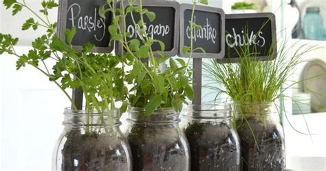 table top herb garden diy table top herb garden from an old pallet via make