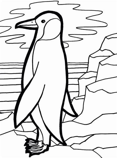 penguin coloring page pdf penguin coloring pages cute emperor penguin coloring