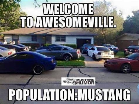 Fox Body Meme - best 25 mustangs ideas on pinterest ford mustang gt500