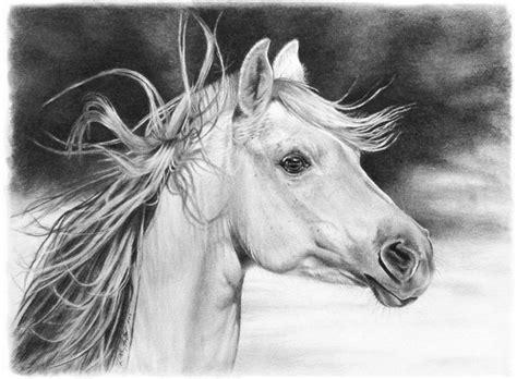 imagenes a lapiz de animales arte pinturas 211 leo dibujos de animales l 225 piz sobre papel
