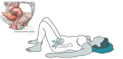 pavimento pelvico esercizi di kegel quali sono gli esercizi di kegel e come farli bene