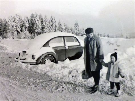 volkswagen winter 210 best vw images on pinterest vw beetles vw bugs and
