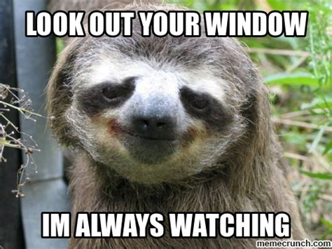 Sloth Meme Pictures - creepy sloth