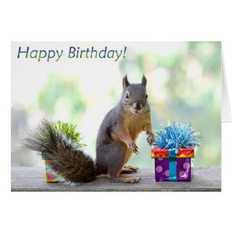 printable birthday cards with squirrels squirrel happy birthday greeting card zazzle