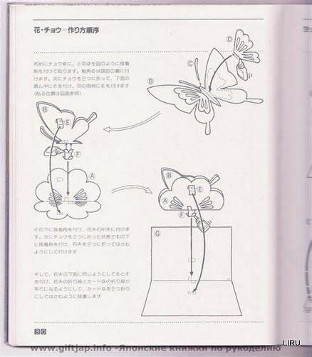Origami And Kirigami - kirigami liru origami picasa web albums cards pop