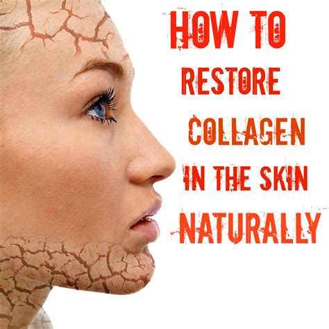 Belleza Collegen how to restore collagen in the skin naturally