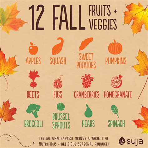 fall vegetables 12 fall fruits and veggies suja juice