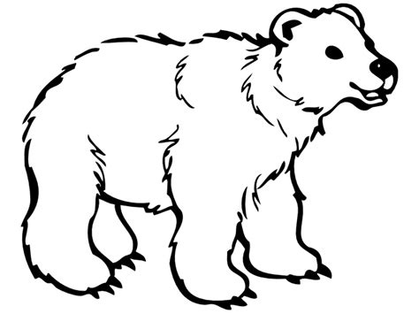 coloring pages of cute bears cute polar bear coloring pages fitfru style printable