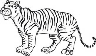 Baby Tiger Outline by Tiger Outline Clipart Best