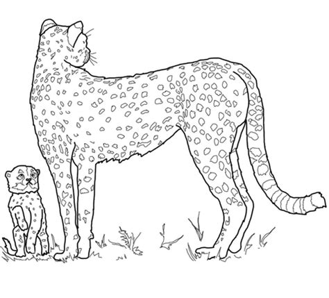 free coloring pages of baby cartoon cheetah coloriage b 233 b 233 gu 233 pard et sa m 232 re coloriages 224