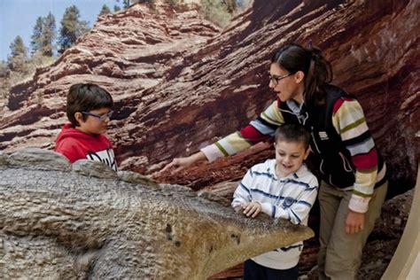 della marca sacile i dinosauri delle dolomiti in una speciale mostra cai