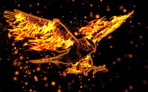fire background hd   stunning hd wallpapers