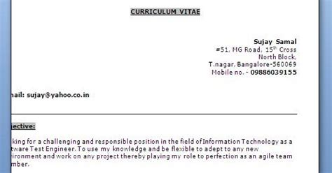 What Is A Resume Cv File by What Is A Cv File