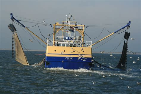 boat n net on doddridge the sea of galilee photo gallery check out the sea of