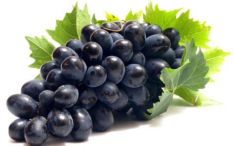 imagenes de unas uvas los 5 principales beneficios de las uvas para nuestra salud