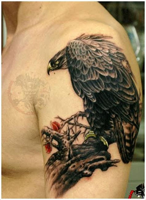 tattoo eagle on shoulder 52 eagle shoulder tattoos ideas and meanings