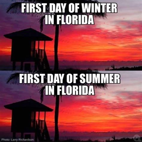 Funny Florida Memes - 25 best ideas about florida meme on pinterest weather