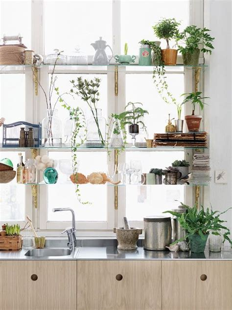 plants in kitchen feed your fire alchemy in the kitchen awakening sacred flow