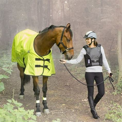 Equi Theme Fly Rug by Equi Theme Visibilite 200g Turnout Rug 163 110 00
