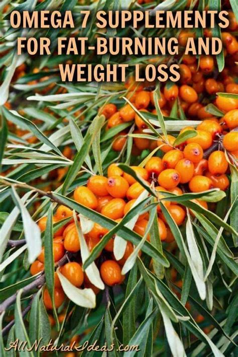 6 supplements that encourage weight loss omega 7 weight loss supplements and side effects all