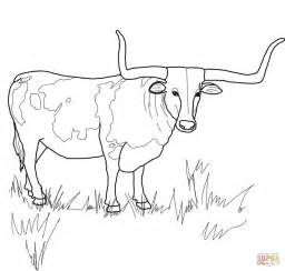 longhorn colors longhorn steer coloring coloring