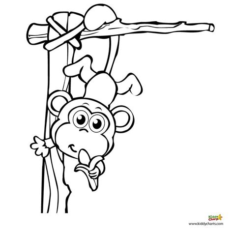 coloring page year of the monkey monkey coloring pages a monkey for your monkey