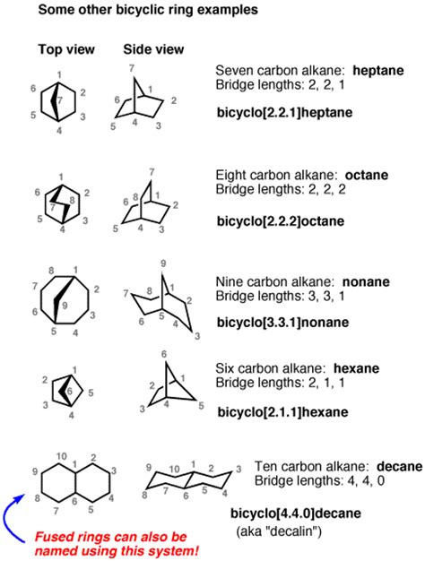 Chair Conformation Bridged Bicyclic Rings And How To Name Them Master