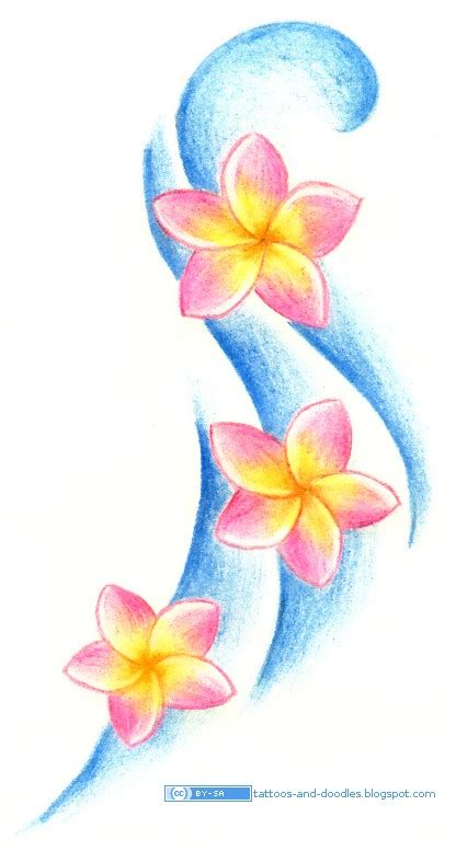 plumeria flower drawing tattoos and doodles plumeria frangipani flowers