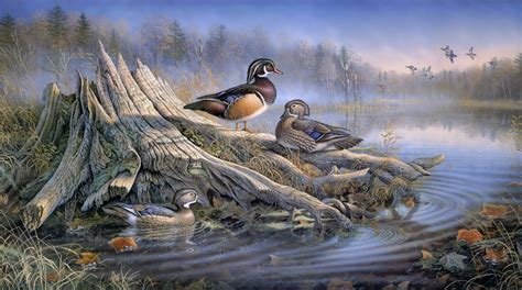 17 best images about painting ducks on pinterest old sam timm backyard solitude art painting duck autumn autumn