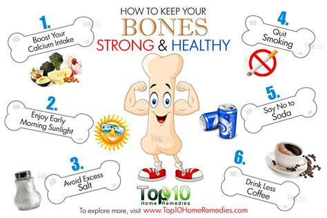 7 Things To About Bones by Bones Clipart Bone Health Pencil And In Color Bones