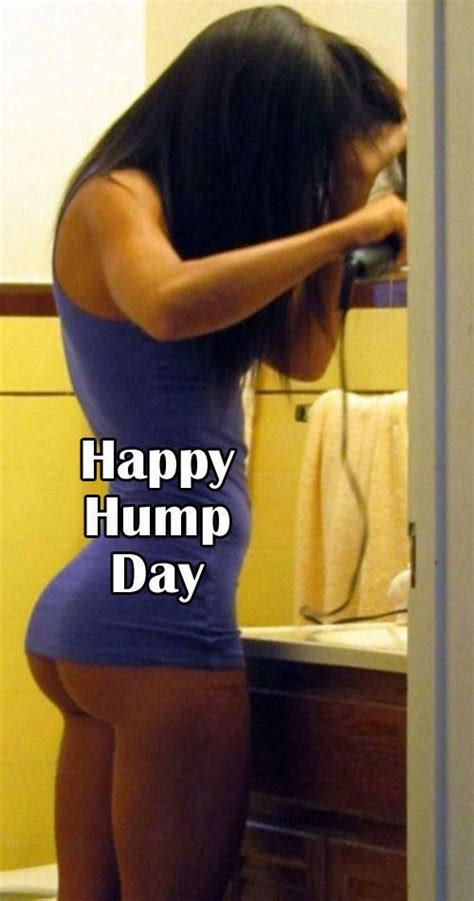 Sexy Hump Day Memes - happy hump day extra pinterest hump day and happy