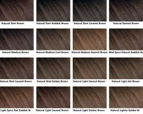 ash hair color chart 25 best ideas about hair color charts on