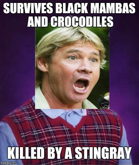 Stingray Meme - bad luck steve irwin imgflip