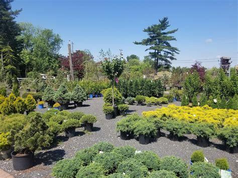 nursery bloomers home garden center