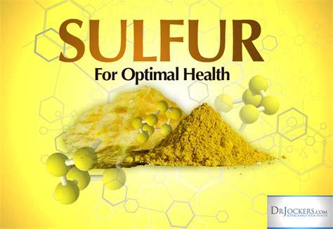 Organic Sulfur Metal Detox Brain by The 12 Best Food Sources Of Sulfur