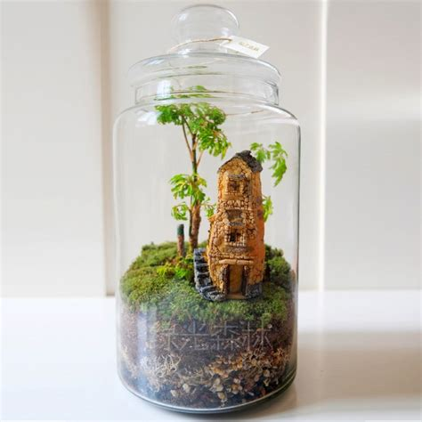 garden in a bottle micro mini home house moss sketch secret garden landscape