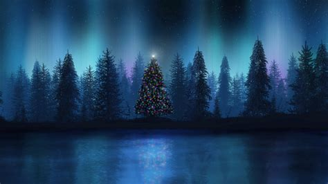 christmas tree in the forest wallpaper 21656