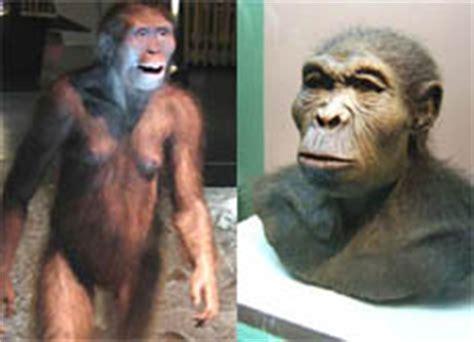 wann lebten die ersten menschen auf der erde evolution des menschen vom urmensch zum sapiens sapiens