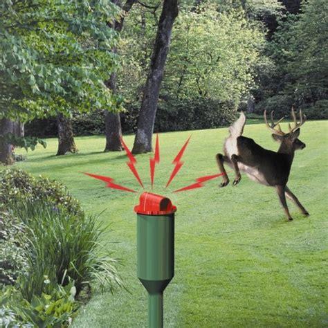 Deer Repellent For Gardens by New Havahart 5250 Electronic Deer Repellent Watering Lawn
