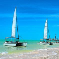 shelling catamaran marco island 1000 images about discover your paradise on pinterest