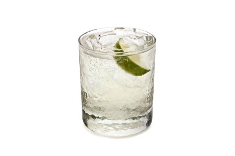 virgin gin and tonic recipe chowhound