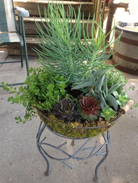 Succulent Dish Garden Ideas Succulent Dish Garden Garden I Succulents Pinterest