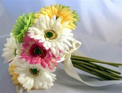 thinkin of home gerber daisy love 88 best daisy wedding images on pinterest bridal