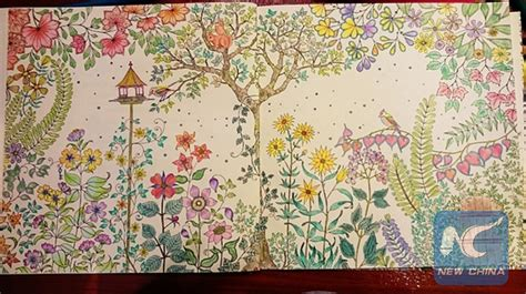 secret garden colouring book sydney secret garden book pages garden ftempo