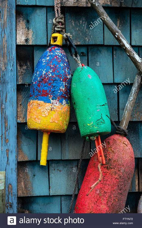 colorful lobster colorful lobster buoys on a coastal shack maine usa