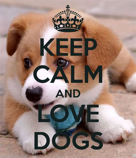 calm puppy keep calm and dogs poster kaka keep calm o matic