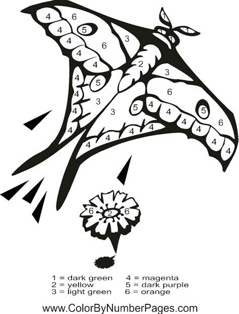 color by number butterfly coloring pages color by number butterfly coloring pages